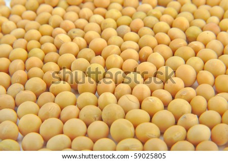 Close-up of soy beans - stock photo