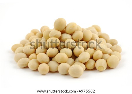 Close up of soy beans in isolated white background - stock photo