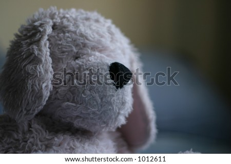 Close up of Stuffed animal - stock photo