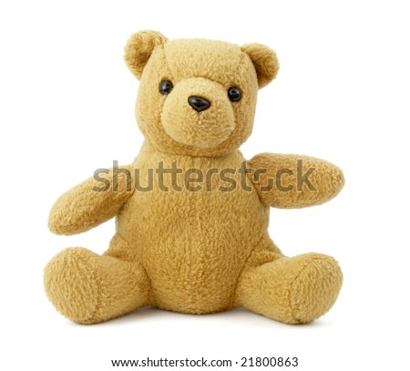 close up of teddy bear on white background with clipping path