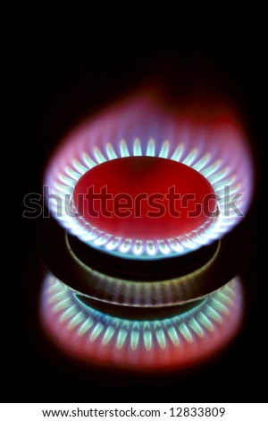Close up of the flame of a gas cooker, with its reflection, on a black background. - stock photo