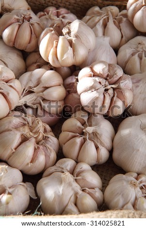 close up of the garlic in a crate - stock photo