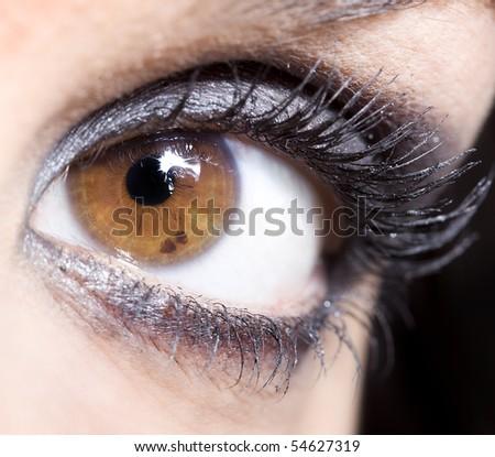 close up of the make up of a beautiful broun eye - stock photo