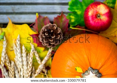 Close up of the Orange Pumpkin, Apple, Wheat and Autumn Leaves on Wooden Background as Autumn Concept, Shallow DOF, Selective Focus - stock photo