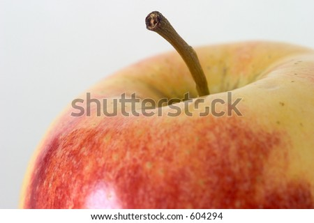 Close-up of the top of an apple, with focus on the end of the stem. - stock photo