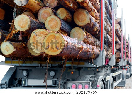 Close up of timber on trailer of timber truck  - stock photo