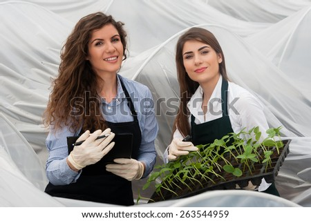 Close-up of two biotechnology women engineer with a clipboard and pen examining a plants for disease from a plastic tray! - stock photo