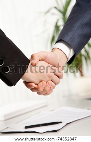 Close-up of two business people?s shaking hands - stock photo