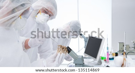 close up of two people around a lab table testing and applying genetic techniques on mushrooms and another man analysing molecules under the microscope - stock photo