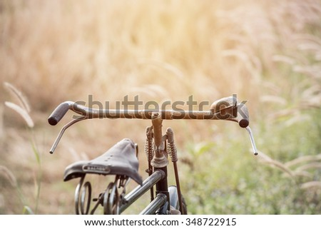 close up of Vintage Bicycle with Summer grassfield ; vintage filtered style