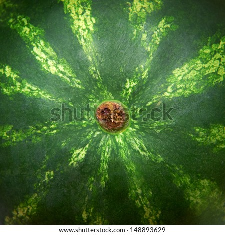 close up of water melon skin - stock photo