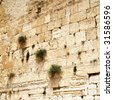 Close up of Western wall. Jerusalem. Israel. - stock photo