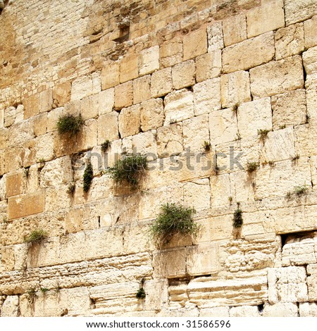 Close up of Western wall. Jerusalem. Israel. - stock photo