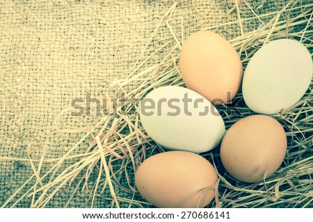 Close up of white fresh egg on brown burlap