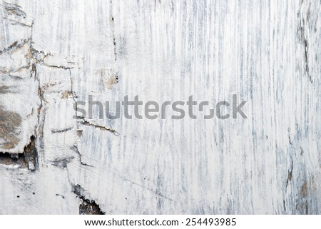 Close up of white wooden background texture.