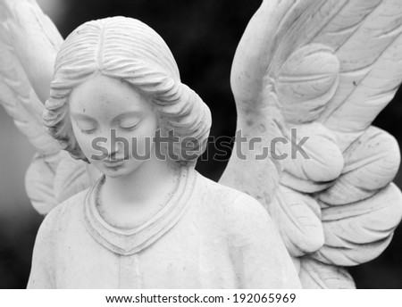 close up of winged angel statue  - stock photo