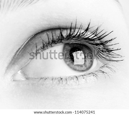 Close-up of woman eye in black and white - stock photo
