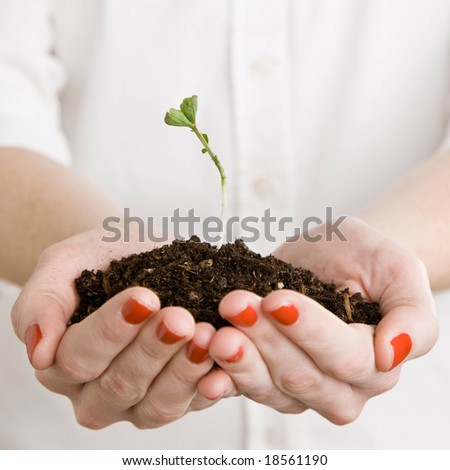 Close up of woman holding handful of dirt and delicate, growing seedling