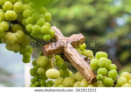 Close up of wooden cross with star gooseberry, symbolic of fruitfulness for religion background  - stock photo