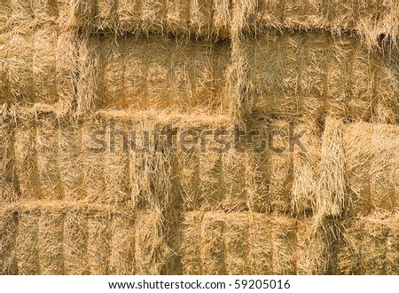 Close up of yellow hay bales. - stock photo