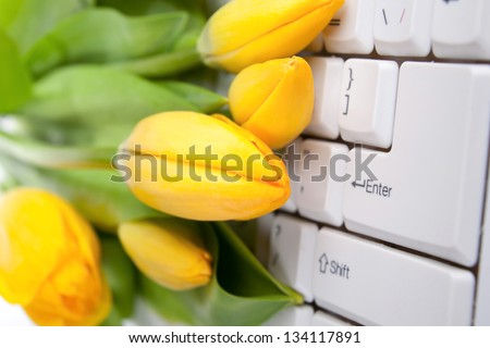 Close-up of yellow tulips placed on white keyboard - stock photo