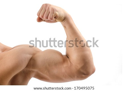 Close up on a bodybuilder biceps,shoulder,arm isolated on white background - stock photo