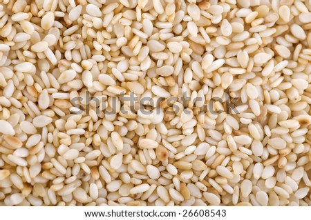 Close up on a pile of dried Sesame Seed. - stock photo