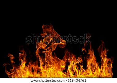 close up on Fire flames on a black background