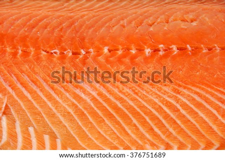 close up on fresh salmon background