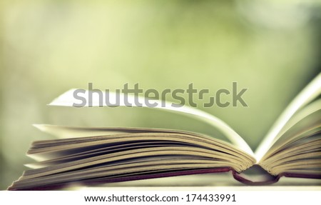 Close up on open book pages - stock photo