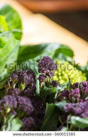 Close up on purple broccoli, with romanesco cauliflower in the background. - stock photo