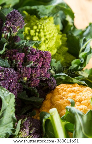 Close up on purple broccoli, with yellow cauliflower and romanesco cauliflower in the background and foreground. - stock photo