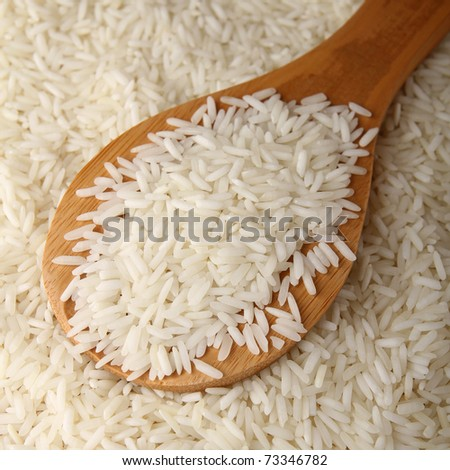 close up on rice - stock photo