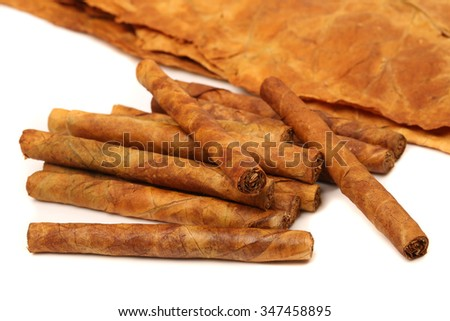 Close-up on the cigar tobacco leaves with space for text - stock photo