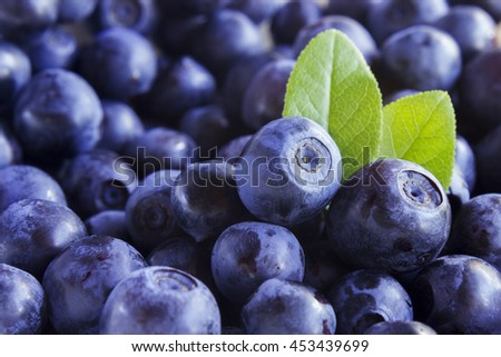 Close up photo of blueberries. Fresh ripe juicy bilberries, bright autumn colorful background. Concept for healthy diet with berries. Selective Soft focus - stock photo