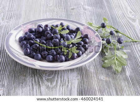 Close up photo of blueberries on the plate. Fresh ripe juicy bilberries, bright autumn colorful background. Concept for healthy diet with berries. Selective Soft focus - stock photo