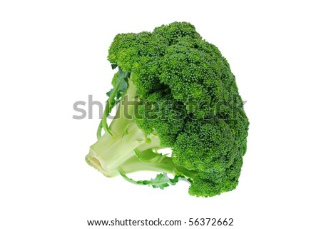 close-up photo of green broccoli isolated on white - stock photo