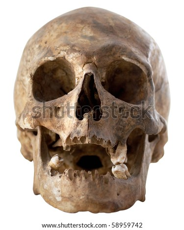 Close-up Photo of Human Skull Isolated on White Background (with Clipping Path) - stock photo