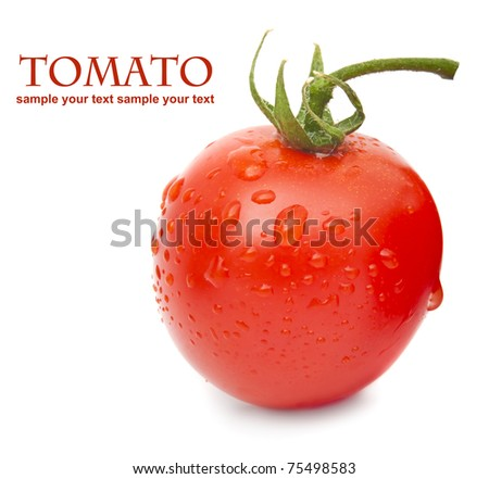 Close-up photo of tomato with water drops - stock photo