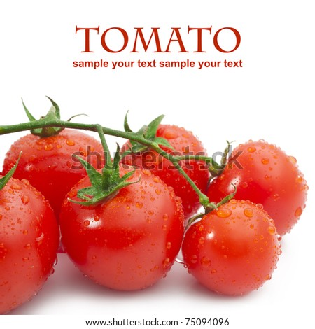 Close-up photo of tomatoes with water drops - stock photo