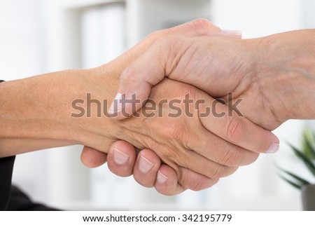 Close-up Photo Of Two Businesspeople Shaking Hands - stock photo