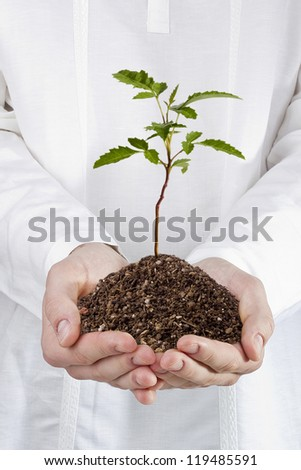Close-up photograph of a man holding a young plant in his hands. - stock photo