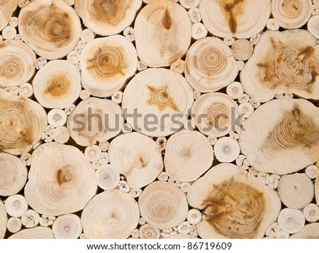 Close-up photograph of wooden texture - stock photo