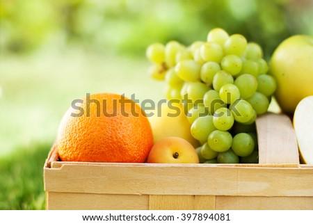 Close up Picnic Basket Fresh Food Bio Organic Fruit Green Natural Background Selective Focus - stock photo