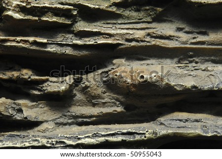 Close up picture of abstract rock texture - stock photo