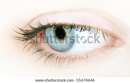 Close-up portrait of a beautiful female eye - stock photo