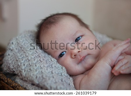 Close up portrait of a one month old baby boy in the basket  - stock photo