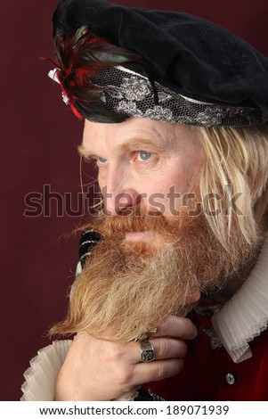 close-up portrait of an adult male with long beard and mustache, wearing a hat and medieval costume - stock photo