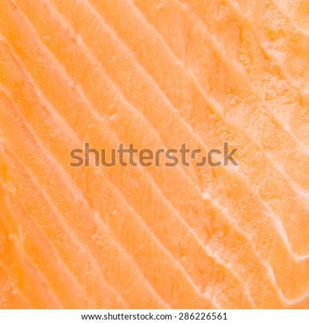 Close up raw salmon meat textures for background