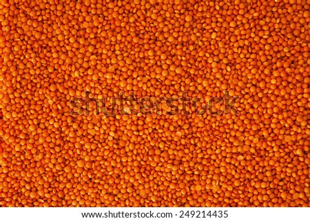 Close up , Red lentils background , full frame - stock photo